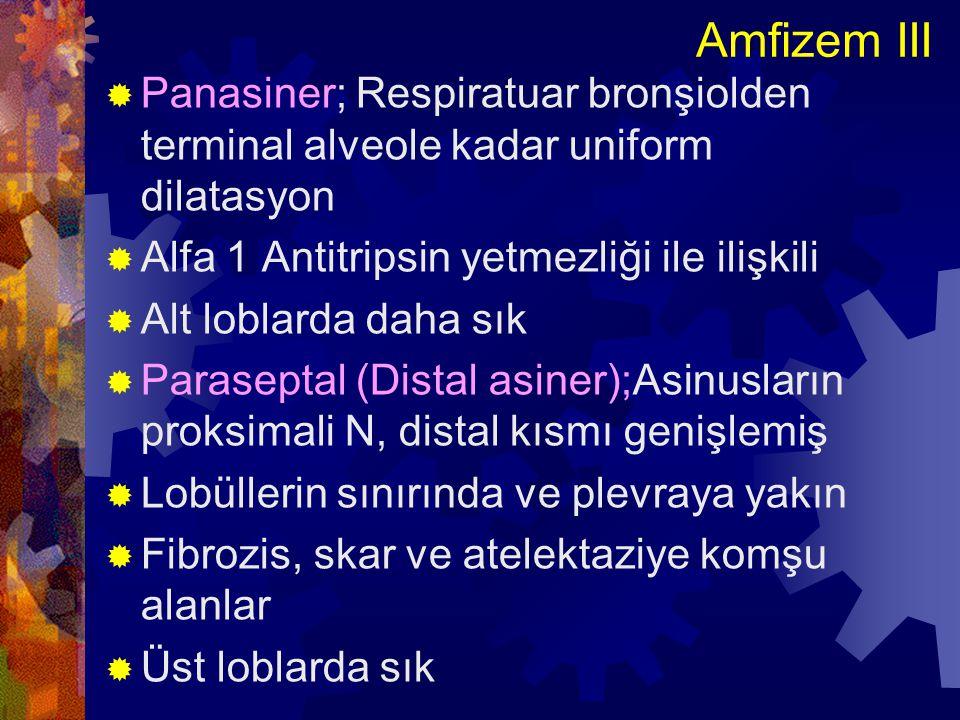 Amfizem III Panasiner; Respiratuar bronşiolden terminal alveole kadar uniform dilatasyon. Alfa 1 Antitripsin yetmezliği ile ilişkili.