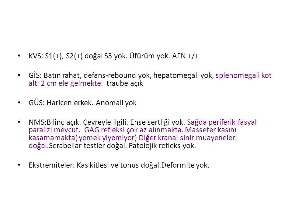 KVS: S1(+), S2(+) doğal S3 yok. Üfürüm yok. AFN +/+