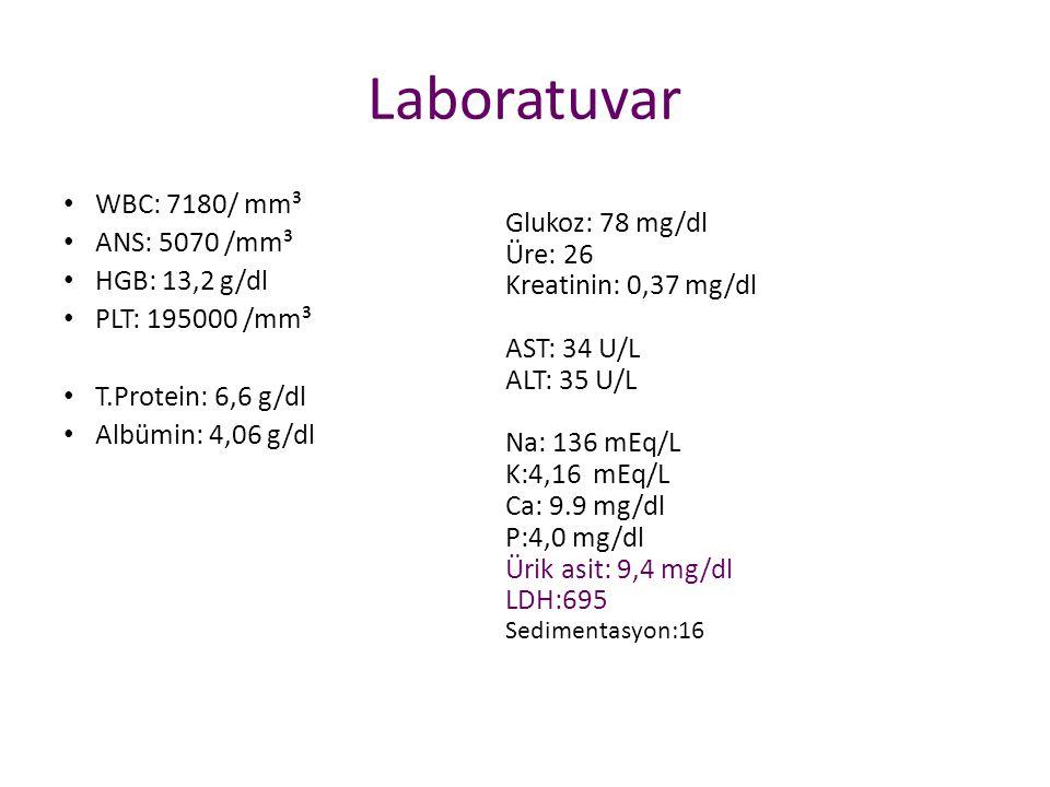 Laboratuvar WBC: 7180/ mm³ ANS: 5070 /mm³ Glukoz: 78 mg/dl