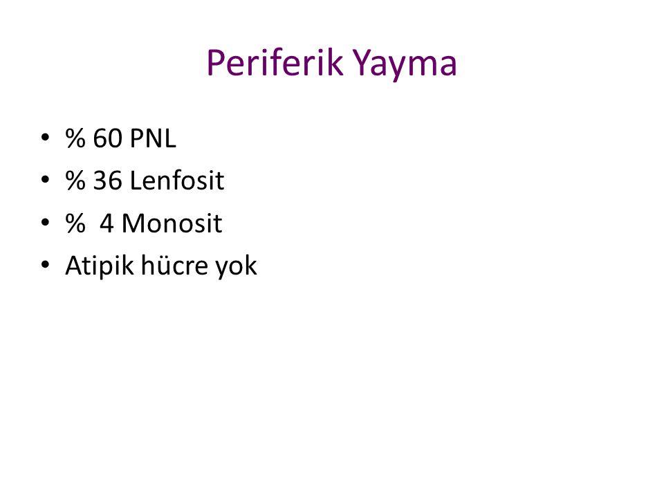 Periferik Yayma % 60 PNL % 36 Lenfosit % 4 Monosit Atipik hücre yok