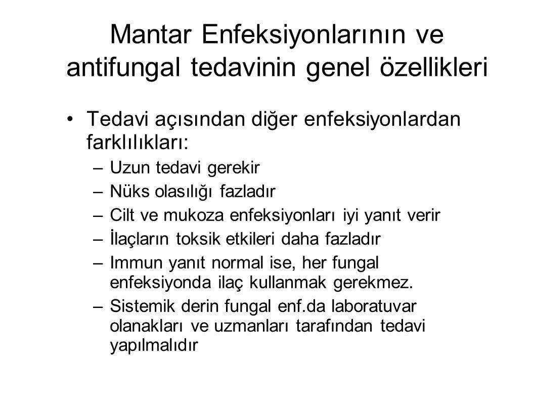 Mantar Enfeksiyonlarının ve antifungal tedavinin genel özellikleri