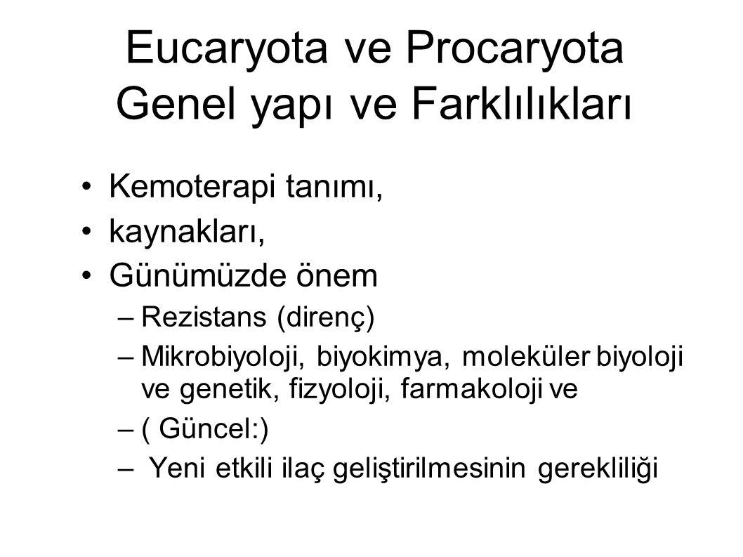Eucaryota ve Procaryota Genel yapı ve Farklılıkları