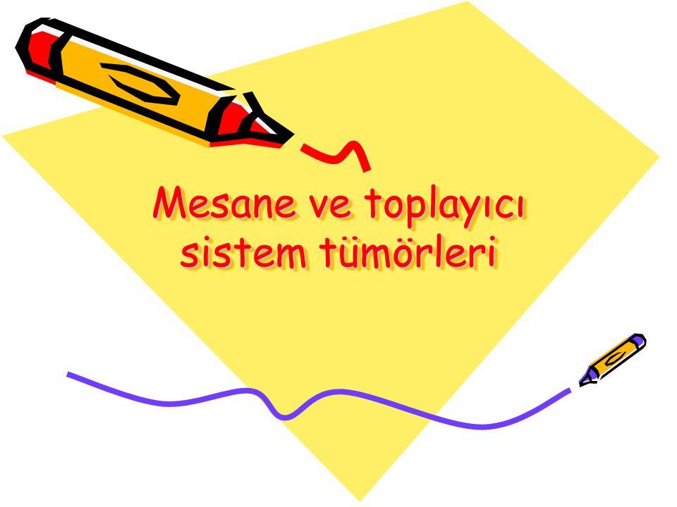 Mesane ve toplayıcı sistem tümörleri