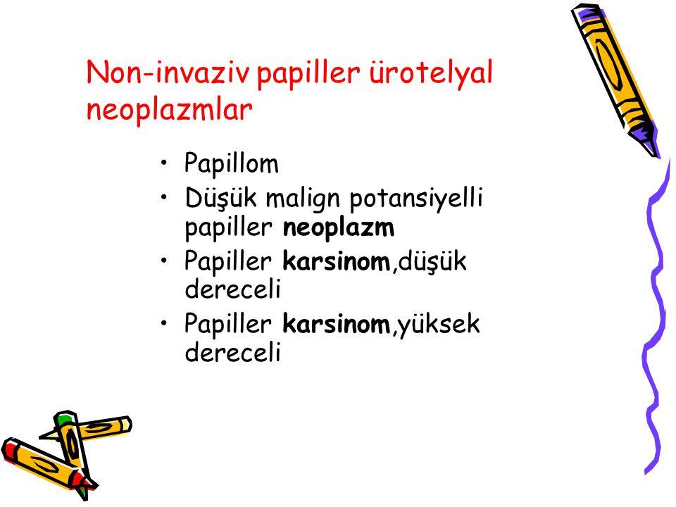 Non-invaziv papiller ürotelyal neoplazmlar