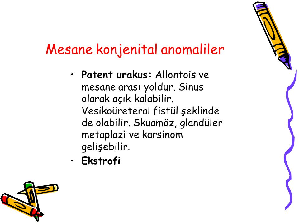 Mesane konjenital anomaliler