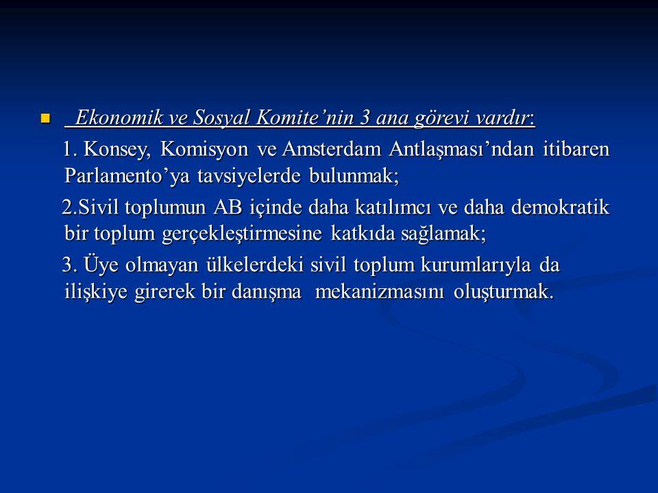 Ekonomik ve Sosyal Komite'nin 3 ana görevi vardır: