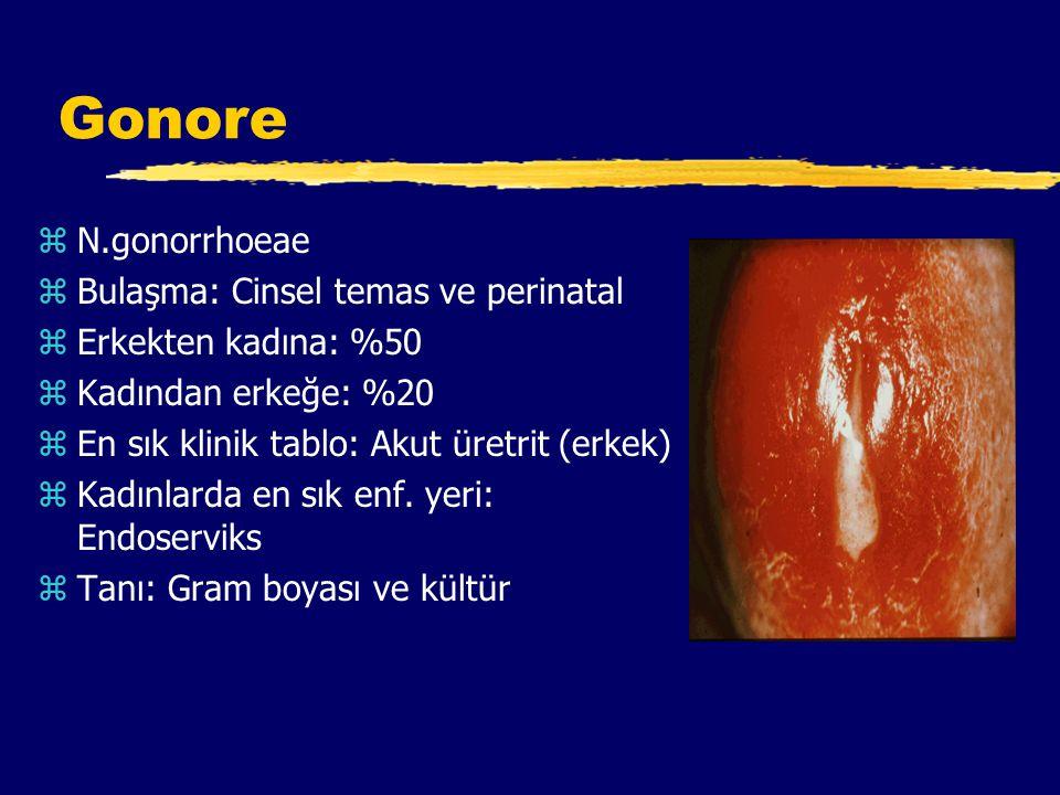 Gonore N.gonorrhoeae Bulaşma: Cinsel temas ve perinatal