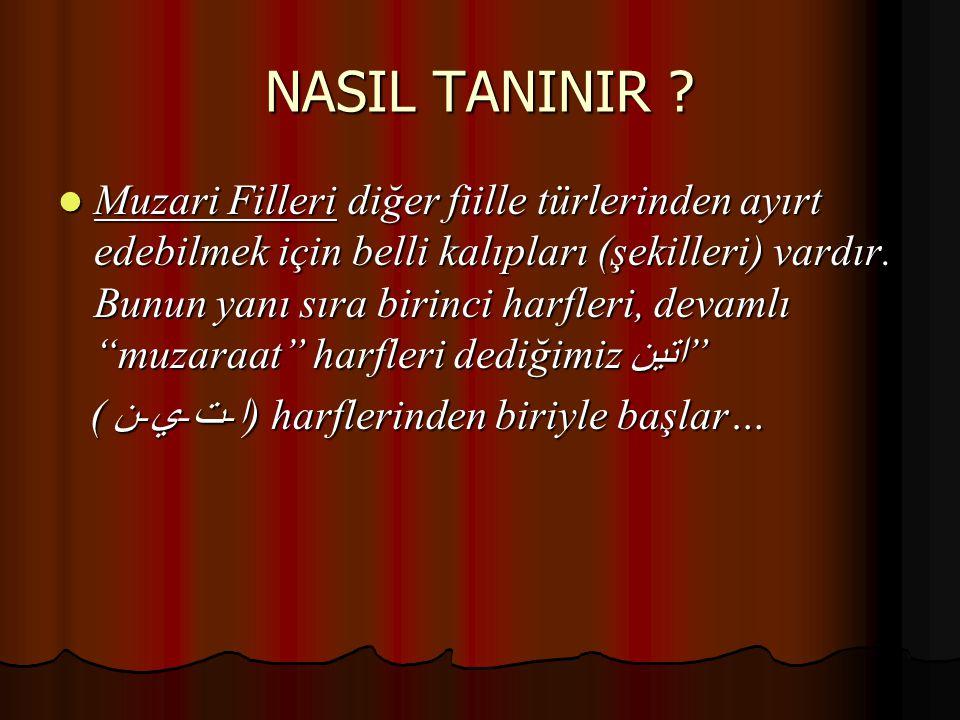 NASIL TANINIR