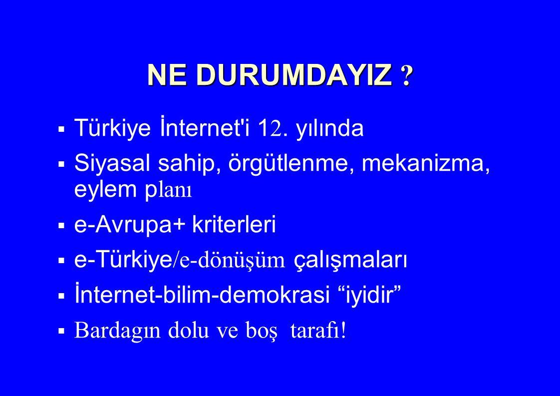 NE DURUMDAYIZ Türkiye İnternet i 12. yılında
