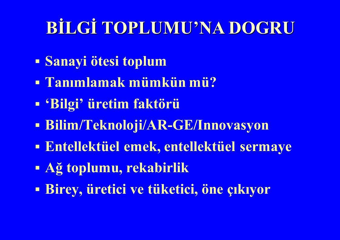 BİLGİ TOPLUMU'NA DOGRU