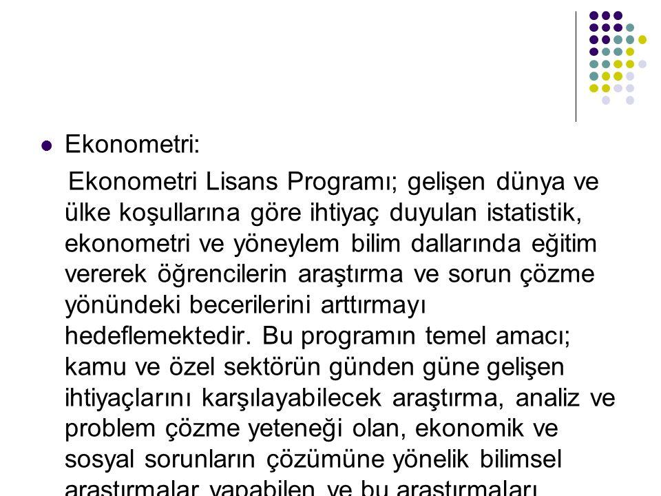 Ekonometri: