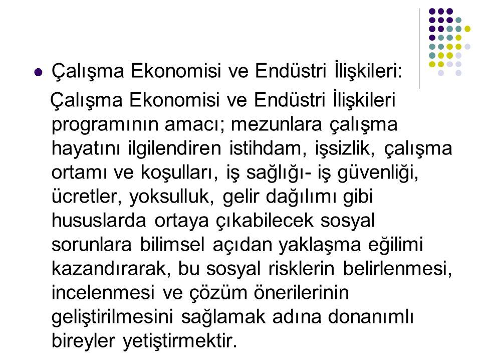 Çalışma Ekonomisi ve Endüstri İlişkileri:
