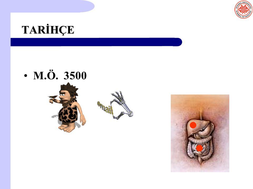TARİHÇE M.Ö. 3500