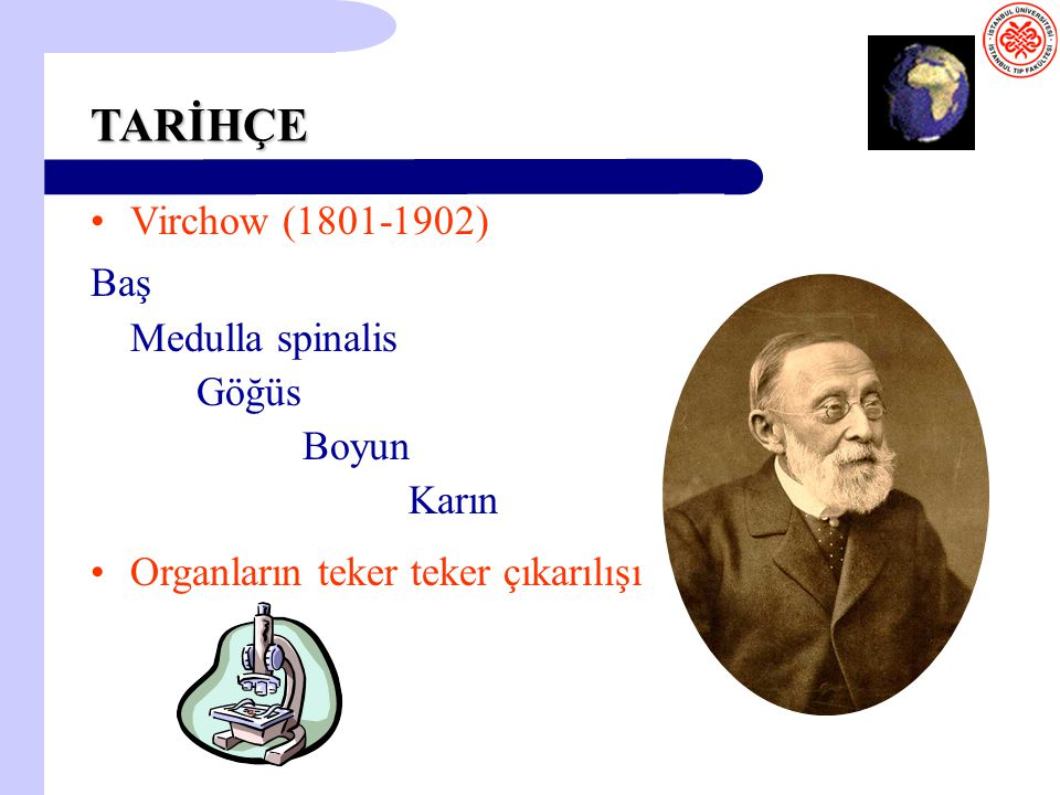 TARİHÇE Virchow (1801-1902) Baş Medulla spinalis Göğüs Boyun Karın
