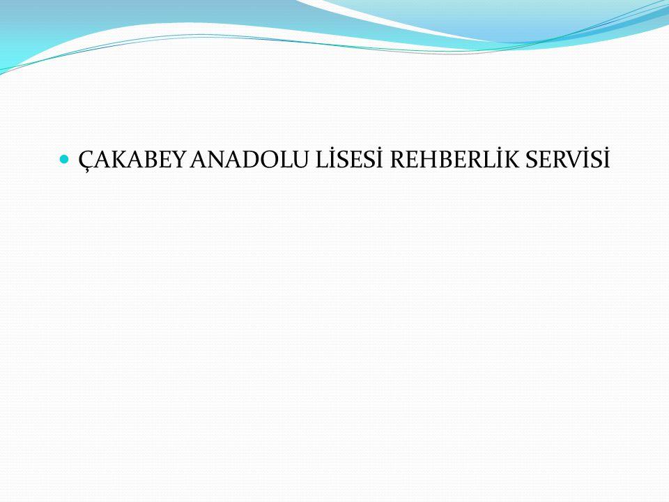 ÇAKABEY ANADOLU LİSESİ REHBERLİK SERVİSİ