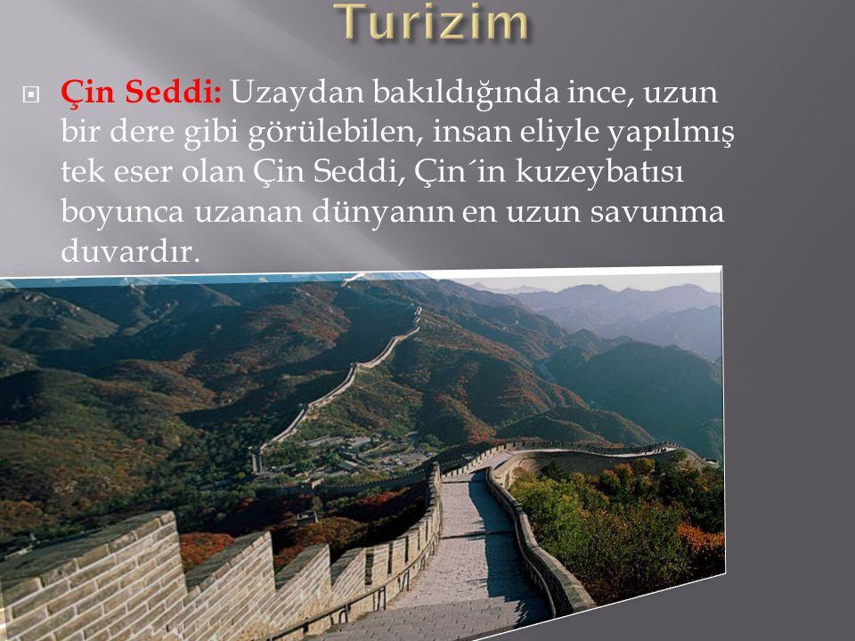 Turizim