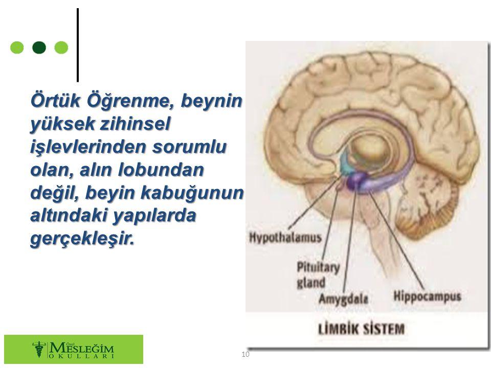Örtük Öğrenme, beynin yüksek zihinsel işlevlerinden sorumlu olan, alın lobundan değil, beyin kabuğunun altındaki yapılarda gerçekleşir.