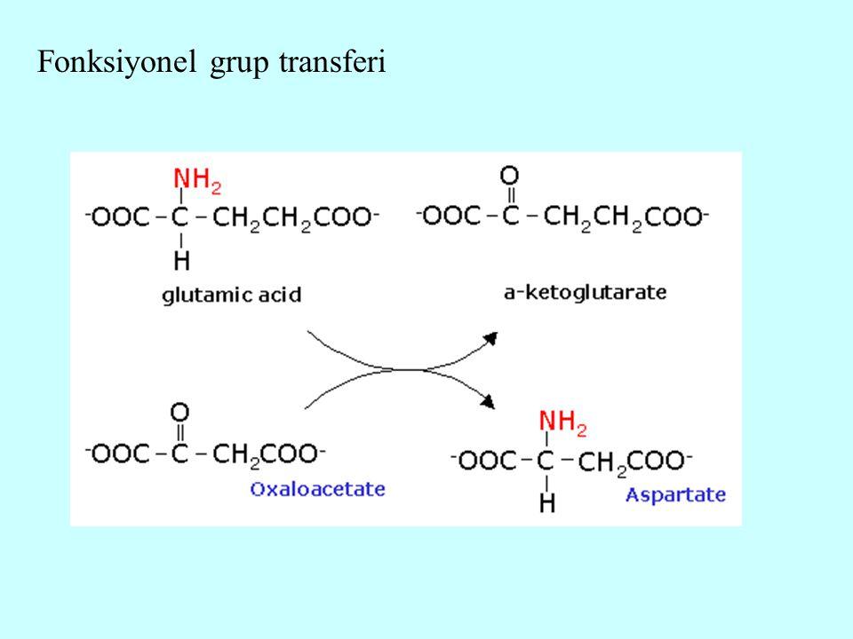 Fonksiyonel grup transferi