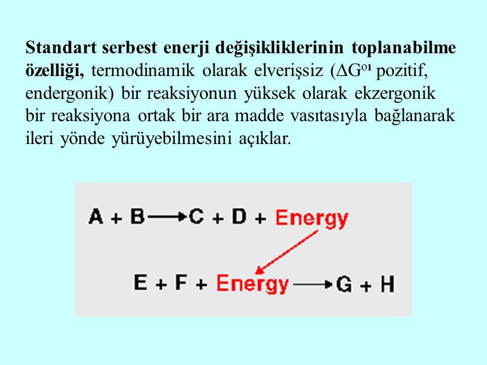 Standart serbest enerji değişikliklerinin toplanabilme özelliği, termodinamik olarak elverişsiz (Goı pozitif, endergonik) bir reaksiyonun yüksek olarak ekzergonik bir reaksiyona ortak bir ara madde vasıtasıyla bağlanarak ileri yönde yürüyebilmesini açıklar.