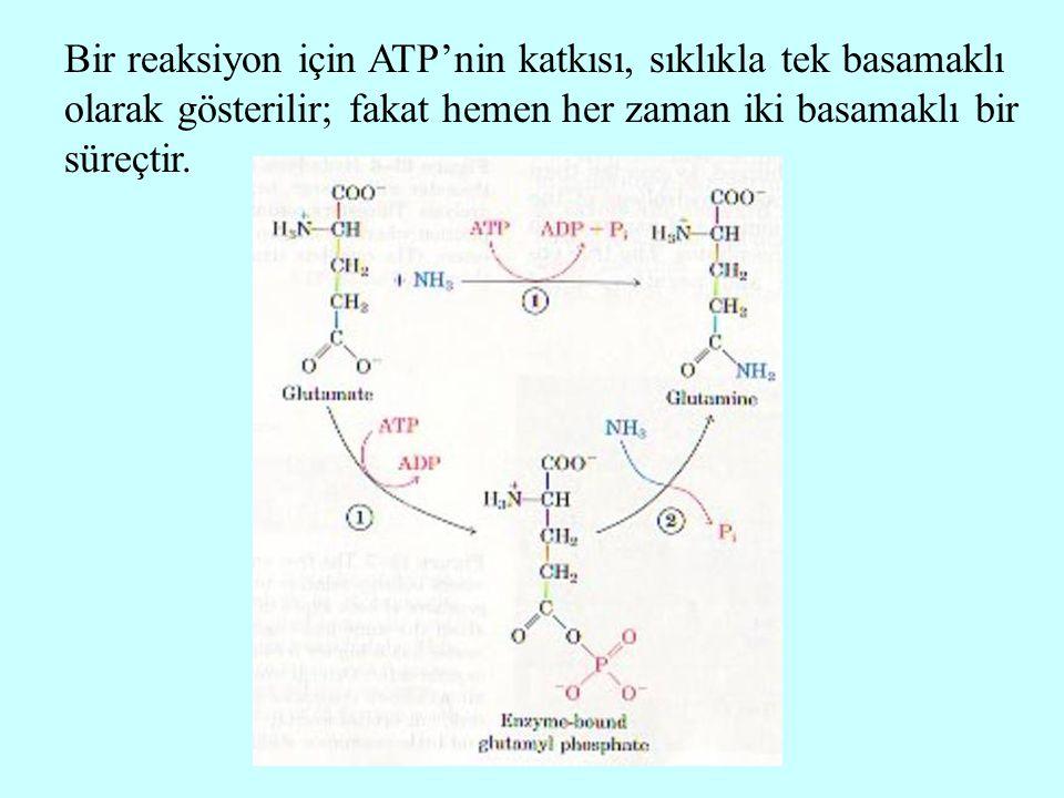Bir reaksiyon için ATP'nin katkısı, sıklıkla tek basamaklı olarak gösterilir; fakat hemen her zaman iki basamaklı bir süreçtir.