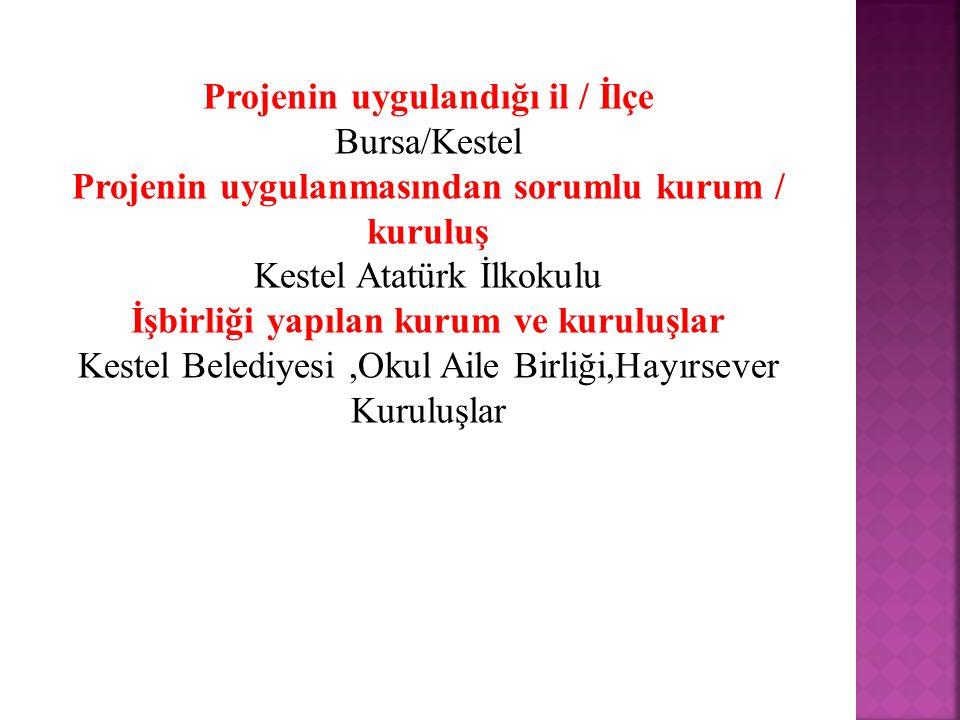 Projenin uygulandığı il / İlçe Bursa/Kestel