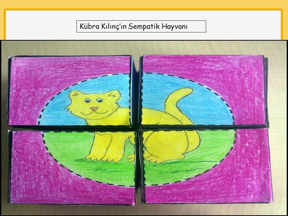 Kübra Kılınç'ın Sempatik Hayvanı