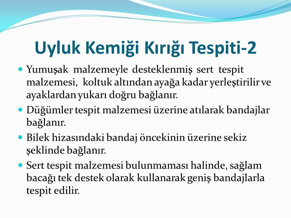 Uyluk Kemiği Kırığı Tespiti-2