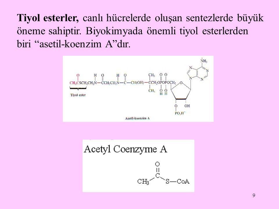 Tiyol esterler, canlı hücrelerde oluşan sentezlerde büyük öneme sahiptir.