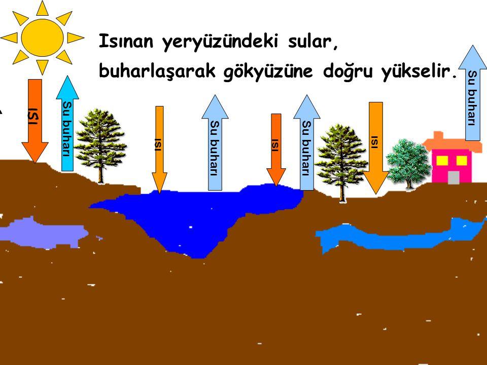 Isınan yeryüzündeki sular, buharlaşarak gökyüzüne doğru yükselir.