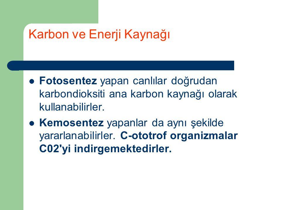 Karbon ve Enerji Kaynağı
