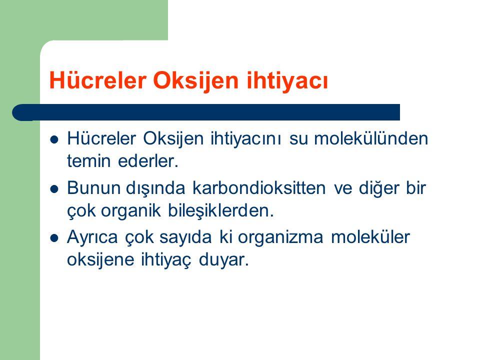 Hücreler Oksijen ihtiyacı