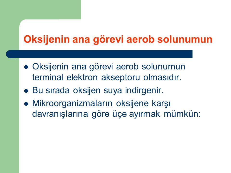 Oksijenin ana görevi aerob solunumun