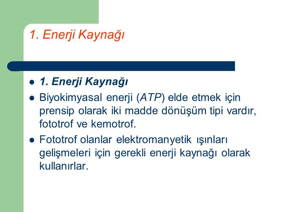 1. Enerji Kaynağı 1. Enerji Kaynağı