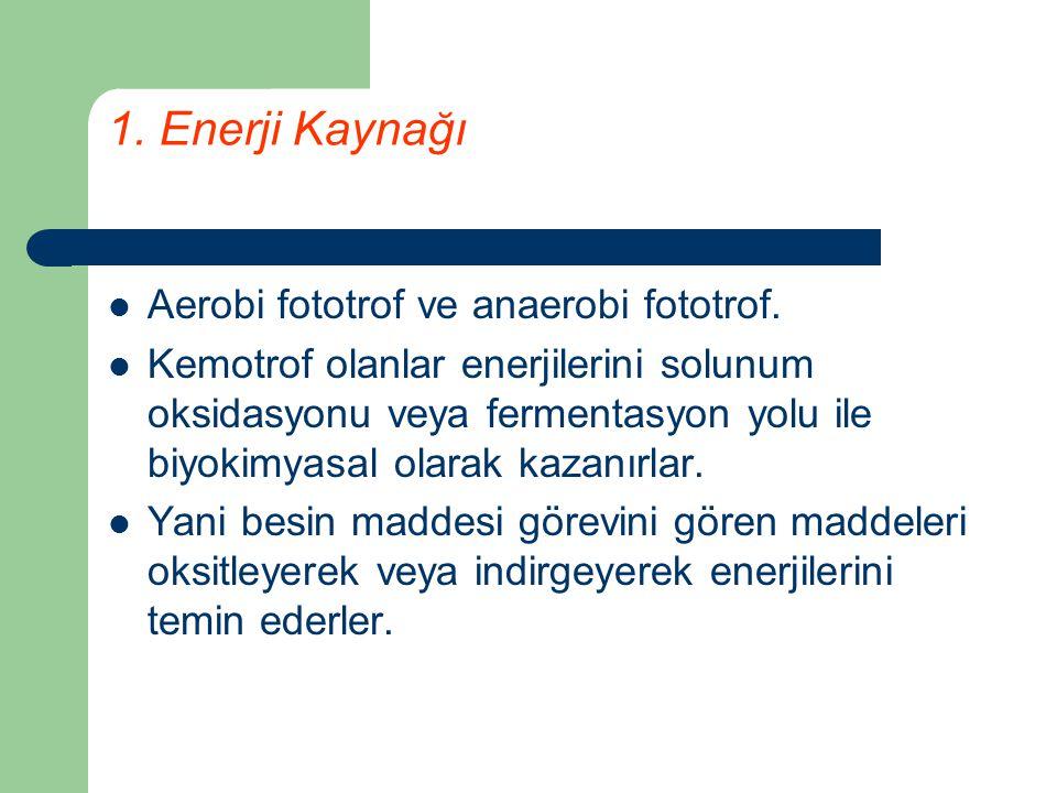 1. Enerji Kaynağı Aerobi fototrof ve anaerobi fototrof.
