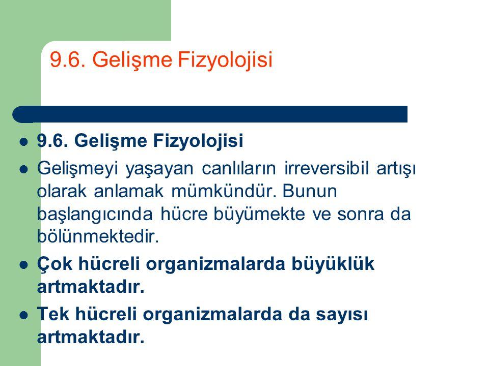 9.6. Gelişme Fizyolojisi 9.6. Gelişme Fizyolojisi