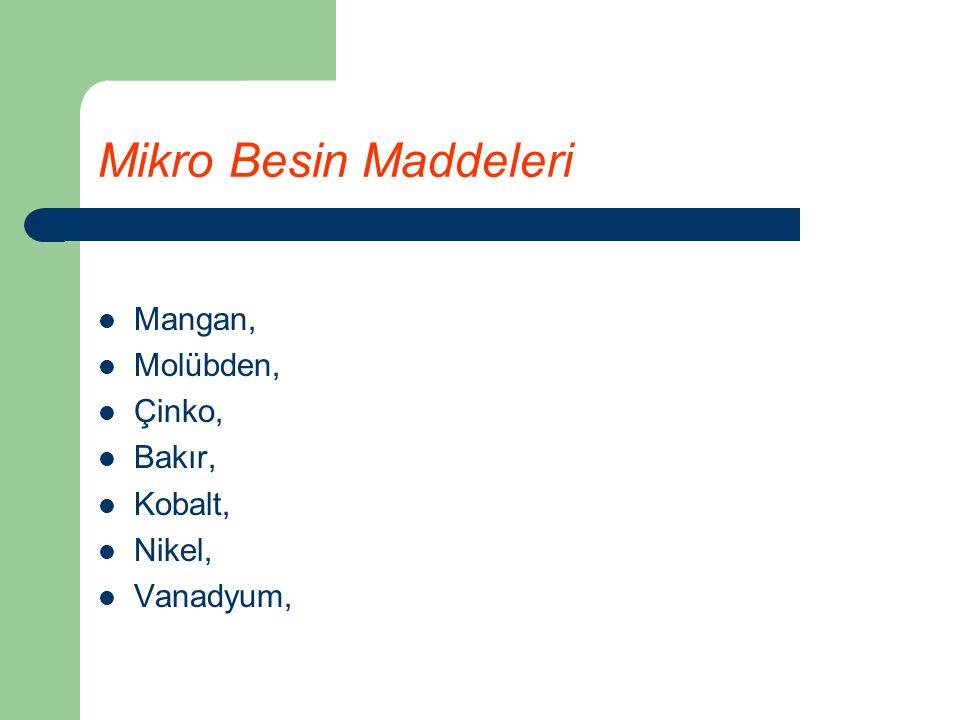 Mikro Besin Maddeleri Mangan, Molübden, Çinko, Bakır, Kobalt, Nikel,