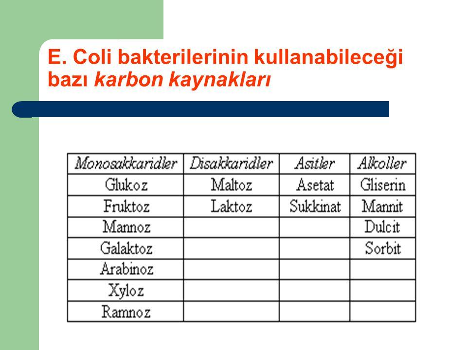 E. Coli bakterilerinin kullanabileceği bazı karbon kaynakları