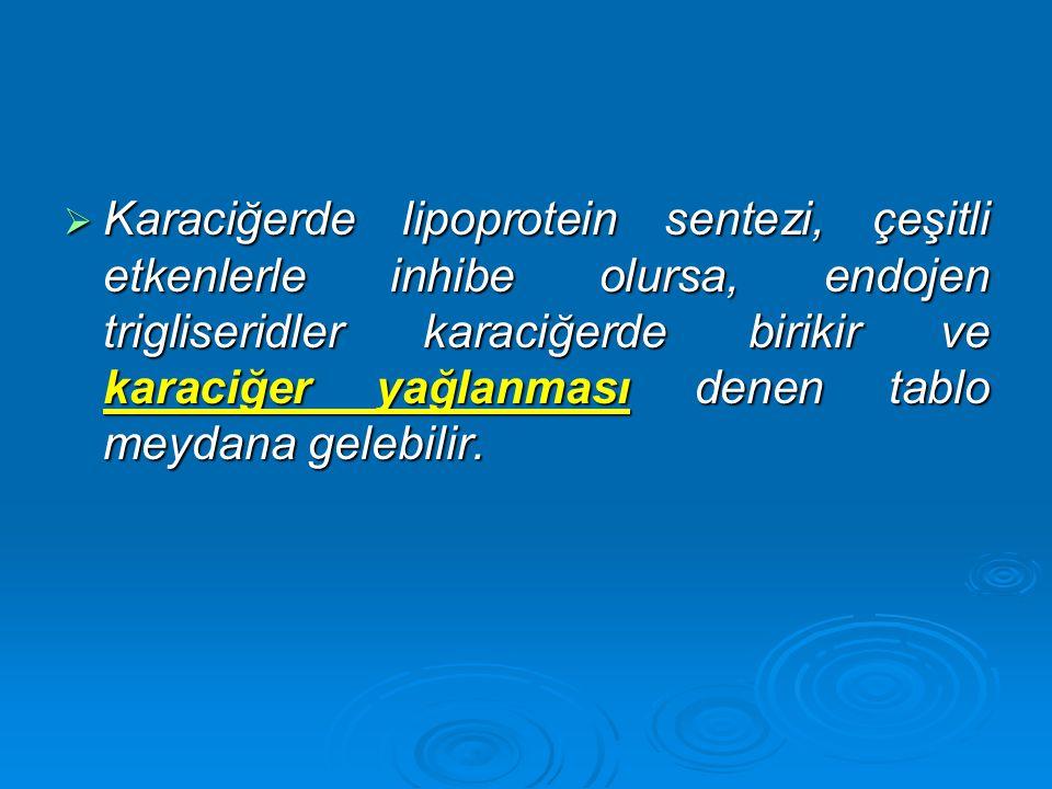 Karaciğerde lipoprotein sentezi, çeşitli etkenlerle inhibe olursa, endojen trigliseridler karaciğerde birikir ve karaciğer yağlanması denen tablo meydana gelebilir.