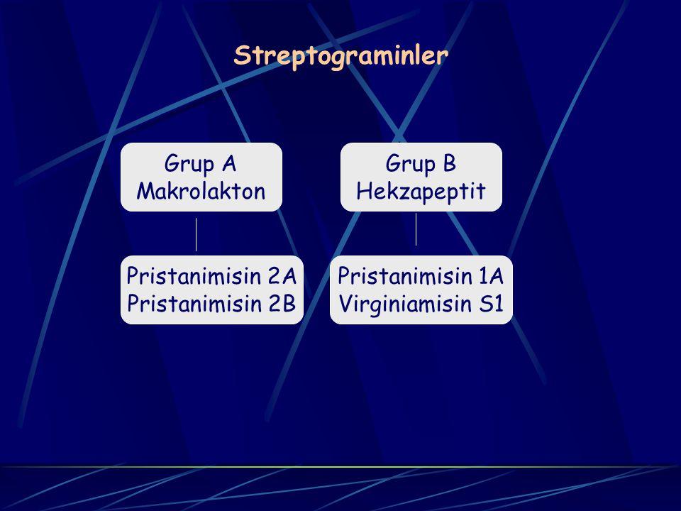 Streptograminler Grup A Makrolakton Grup B Hekzapeptit