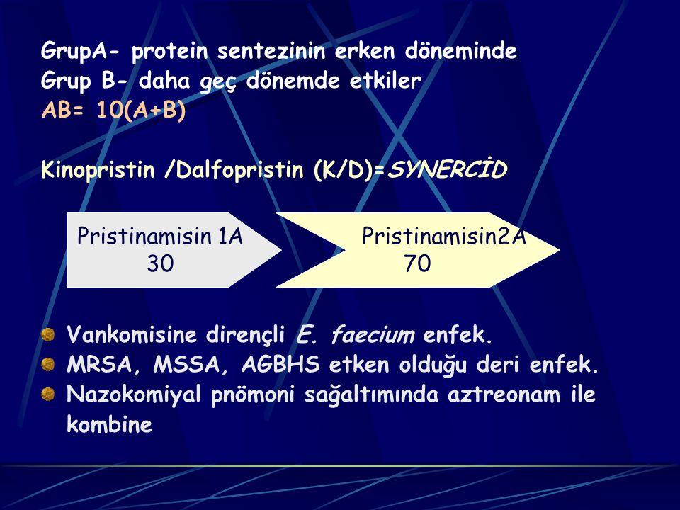 GrupA- protein sentezinin erken döneminde