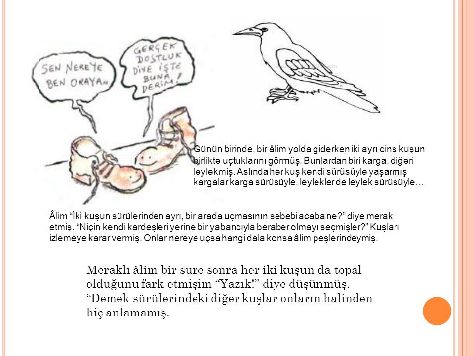 Günün birinde, bir âlim yolda giderken iki ayrı cins kuşun birlikte uçtuklarını görmüş. Bunlardan biri karga, diğeri leylekmiş. Aslında her kuş kendi sürüsüyle yaşarmış kargalar karga sürüsüyle, leylekler de leylek sürüsüyle…