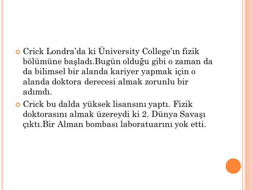 Crick Londra'da ki Üniversity College'ın fizik bölümüne başladı