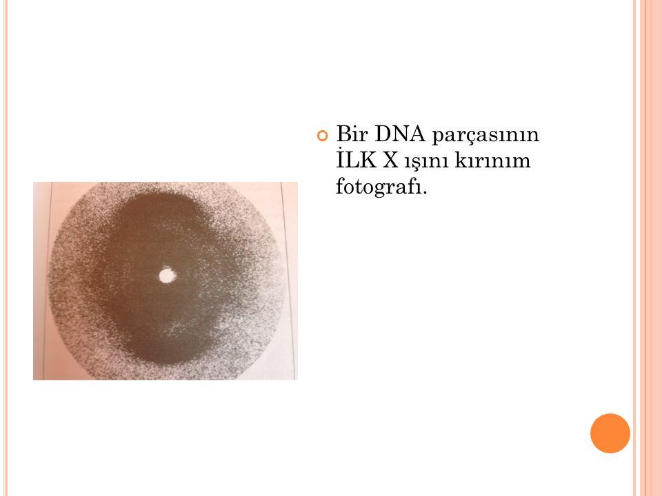 Bir DNA parçasının İLK X ışını kırınım fotografı.