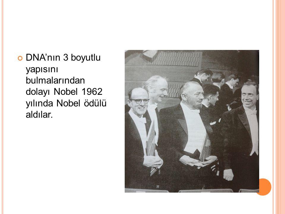 DNA'nın 3 boyutlu yapısını bulmalarından dolayı Nobel 1962 yılında Nobel ödülü aldılar.