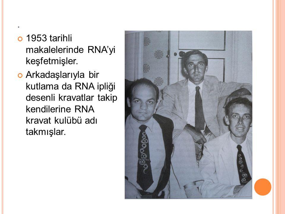 . 1953 tarihli makalelerinde RNA'yi keşfetmişler.
