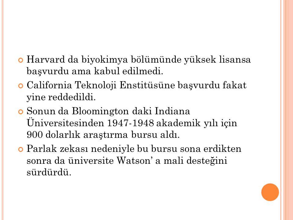 Harvard da biyokimya bölümünde yüksek lisansa başvurdu ama kabul edilmedi.