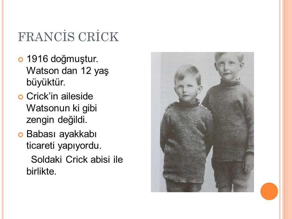 FRANCİS CRİCK 1916 doğmuştur. Watson dan 12 yaş büyüktür.
