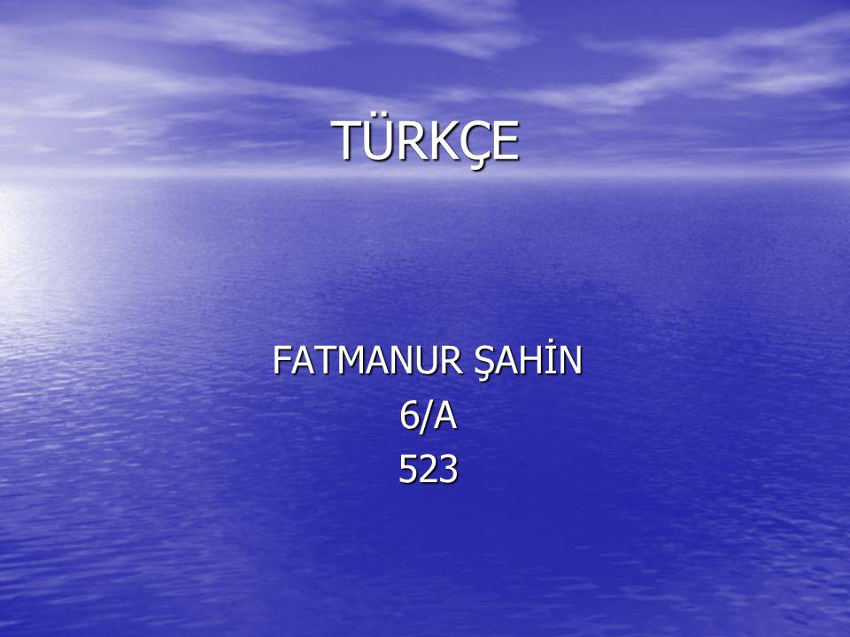 TÜRKÇE FATMANUR ŞAHİN 6/A 523