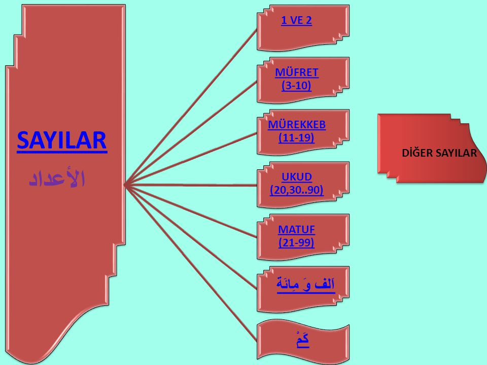 SAYILAR الأعداد اَلف وَ مِائَة كَمْ 1 VE 2 MÜFRET (3-10)