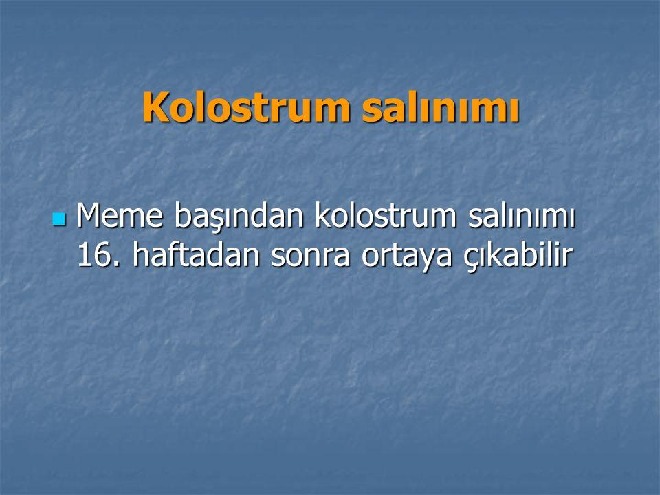 Kolostrum salınımı Meme başından kolostrum salınımı 16. haftadan sonra ortaya çıkabilir